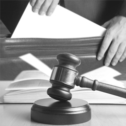 # Court Training for Self-Reps